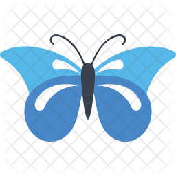 Starry Night Cracker Butterfly Icon