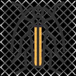 Subgenus Icon