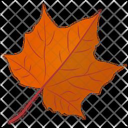 Sugar Maple Icon