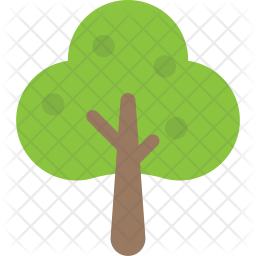 Sugarberry Tree Icon