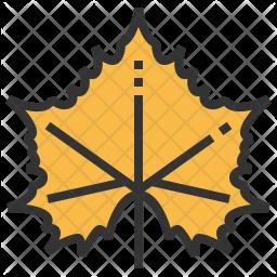 Sycamore Icon