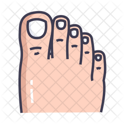 Toe Colored Outline Icon