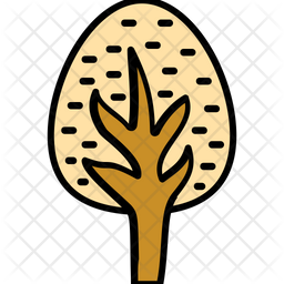 Tree  Tree Icon