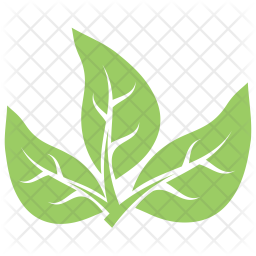 Tripartite Leaves Icon