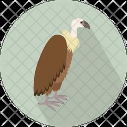 Vulture Icon