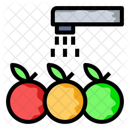 Wash fruits and vegetables Icon