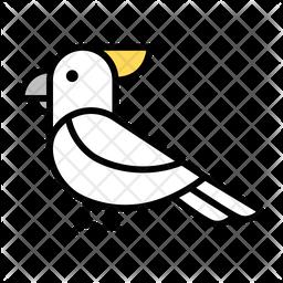 White parrot Icon