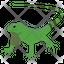 Agamidae Lizard