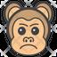 Aggressive Monkey Face