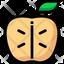 apple slice