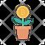 Bitcoin Plant