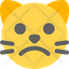 Cat Frowning