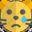 Cat Tear