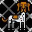 Danish Pointer Dog