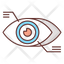 Eyetap Augmentation