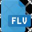 flv Film