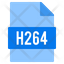 h264 file
