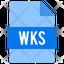wks file