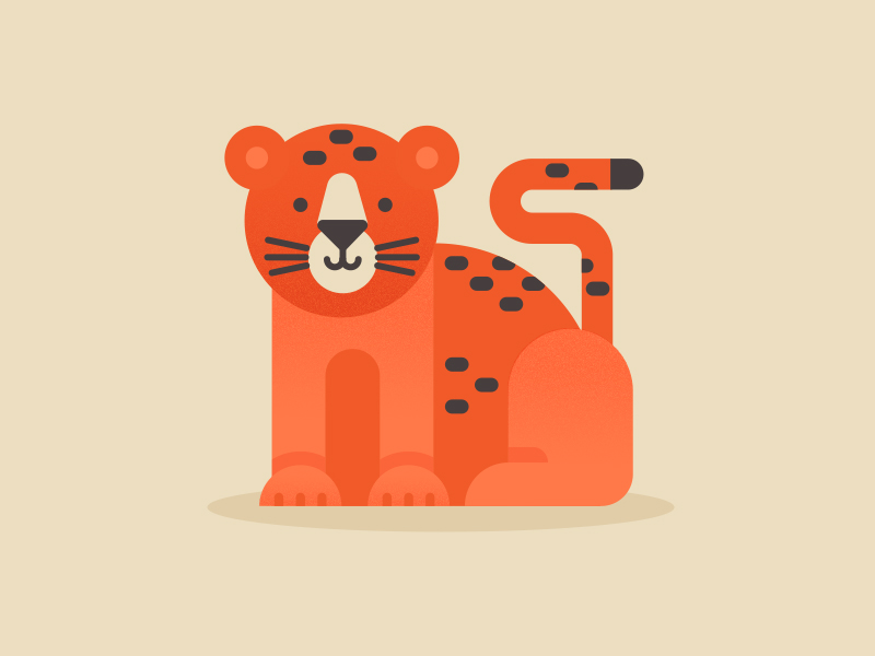 Cheetah by Lilla Bardenova