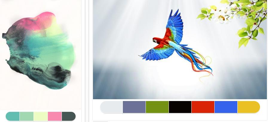 13 Colrd color palette generator