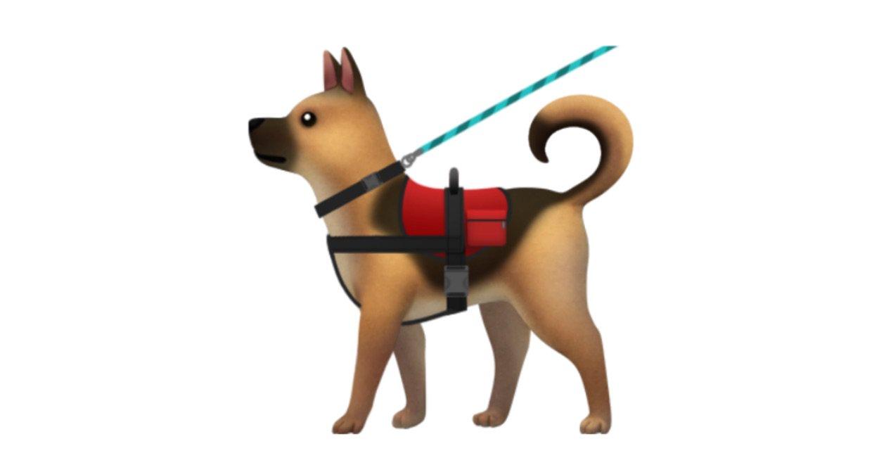 service-dog-with-vest-and-leash-emoji