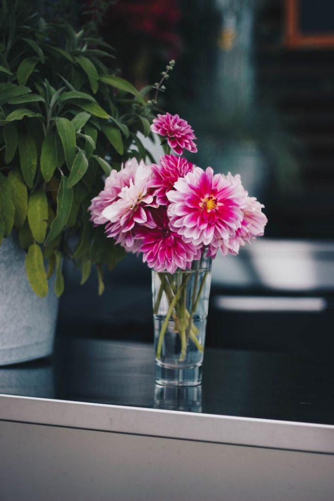 Pink Petaled Flowers by Kristina Paukshtite